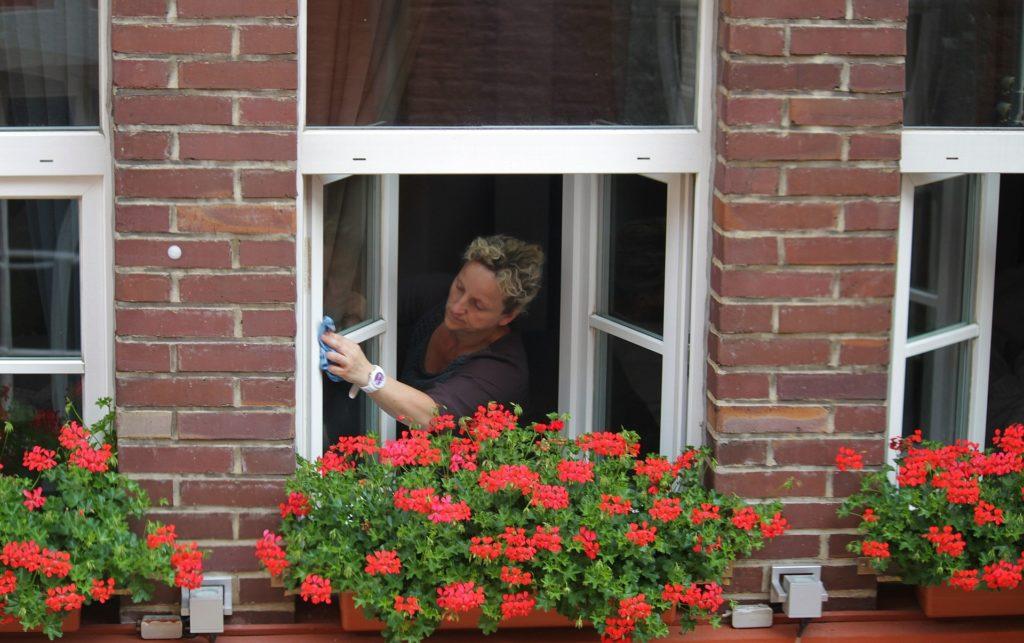 02 Netejar finestres GREEN PVC